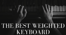 Best Weighted Keyboard