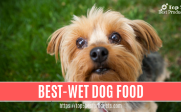 Best-Wet Dog Food 1