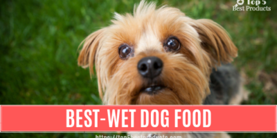 Best-Wet Dog Food 2