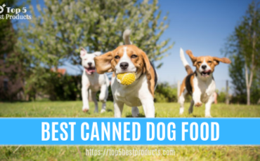 Best-Canned Dog Food 4