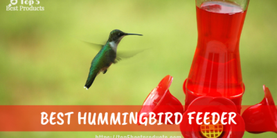 Best Hummingbird Feeder 11
