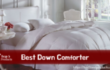 Best Down Comforter 5