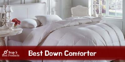 Best Down Comforter 16